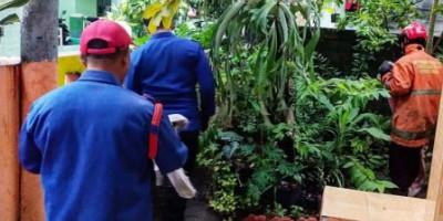 Seekor Biawak yang Berkeliaran di Pulau Tidung Dievakuasi 5 Personel