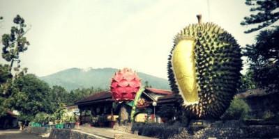 Ini Tempat-tempat Wisata Paling Eksis di Bogor