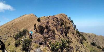 Janjian di Gunung Merbabu Via Timboa