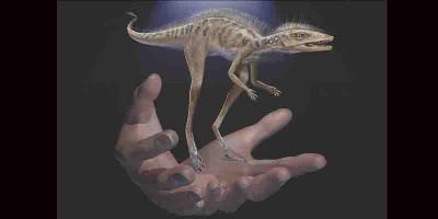 Nenek Moyang Dinosaurus Ternyata Sangat Kecil