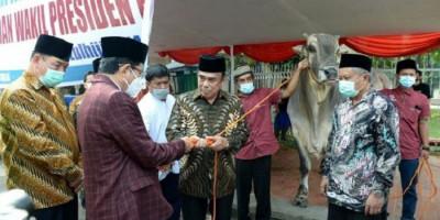 Diwakili Menag, Jokowi Serahkan Sapi Kurban ke Masjid Istiqlal