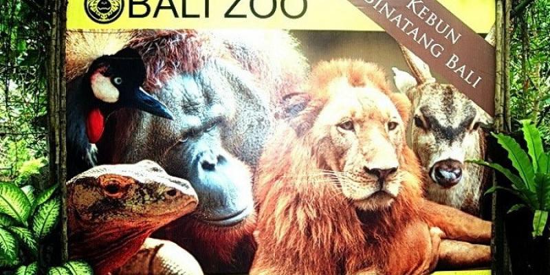 Bali Zoo Kembali Dibuka Ada Promo Menarik Dari Pengelola