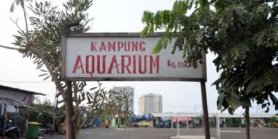 Kampung Akuarium yang Digusur Ahok dan Dibangun Kembali, Anak Buah Anies Sebut Tak Langgar Aturan