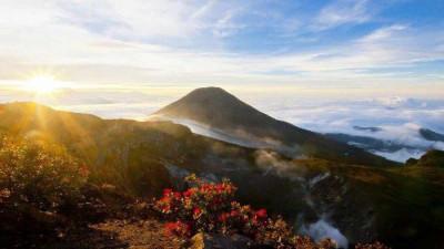 Pendakian Gunung Gede Pangrango Kembali Ditutup
