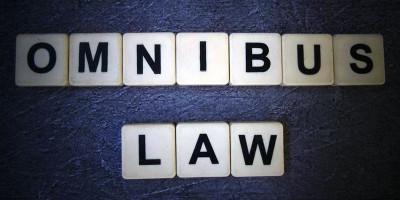 Reformasi Regulasi Lewat Omnibus Law Dapat Pulihkan Ekonomi