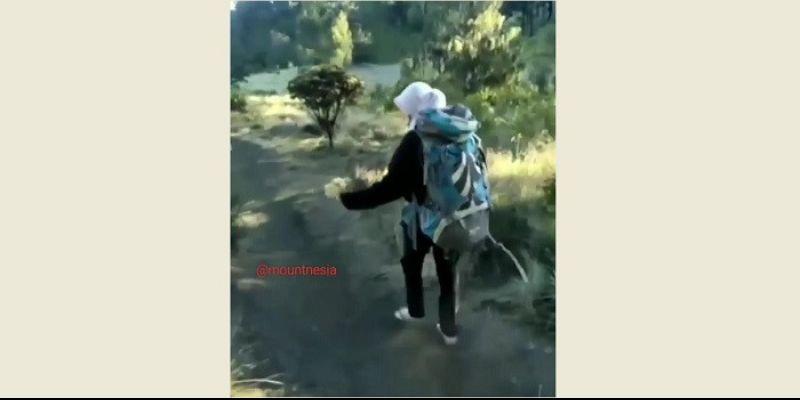 Pelaku Pemetik Bunga Edelweis di Gunung Lawu Minta Maaf, Ini Sanksinya