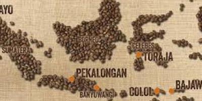 Memperkuat Penetrasi Kopi Indonesia di Pasar Amerika Utara dan Jerman Pascapandemi