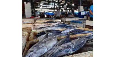 Cek Harga Ikan di Palabuhanratu Jelang Malam Tahun Baru