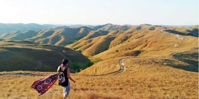 Bukit Wairinding, Eksotisme Alam di Tanah Sumba
