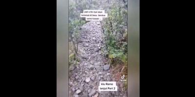 Tersesat di Gunung Lawu, 2 Pendaki Dituntun Burung Jalak Menuju Puncak