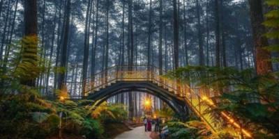 Wisatawan yang Ingin ke Lembang Wajib Bawa Hasil Rapid Antigen