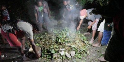 Selamat dari Kekejaman KKB, Kepala Suku Dambet Papua Gelar Ritual Bakar Batu