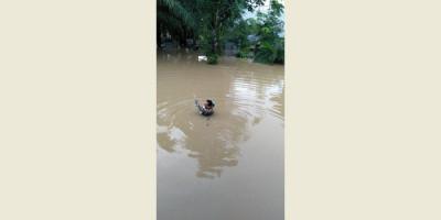 Lebaran Hari Pertama, Ratusan Rumah di Kalimantan Selatan Terendam Banjir