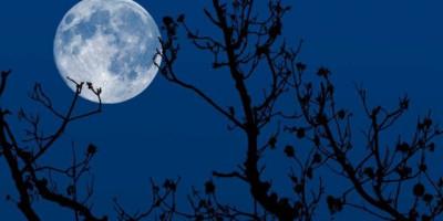 Gerhana Bulan Total Bisa Dilihat di Langit Indonesia Besok, Catat Waktunya