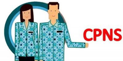 Anda Ingin Lolos Seleksi CPNS, Simak Tips Berikut Ini