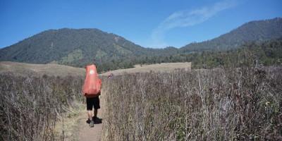 Izin Buang Air Kecil di Balik Batu, Pendaki Perempuan Ini Hilang di Gunung Abbo