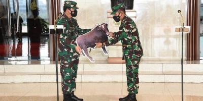 Panglima TNI Serahkan Hewan Kurban
