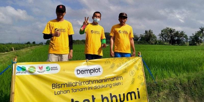 Gunakan Pupuk Cair, Sobat Bhumi Targetkan Panen 10.8 ton Per Hektare Padi di Banyuwangi