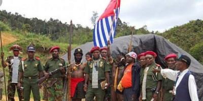 4 Babinsa di Pegunungan Bintang Papua Bekuk 2 Anggota KKB, Amankan 5 Senpi M16 Lengkap dengan Amunisi
