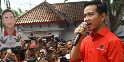 Survei: Gibran Bin Jokowi Mulai Dilirik Masuk Bursa Cagub DKI
